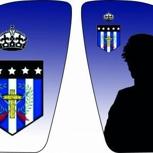 ESPINILLERAS ERREALA DE GIJÓN CF